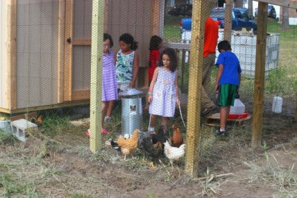 chickens and kids in the new coop at the garden
